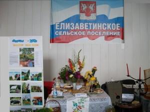 Смотр-конкурс Подворье- 2013 . Большие Колпаны 15-08-2013 006